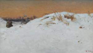 Tholen-sneeuwlandschap