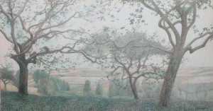 Vlaanderen landschap