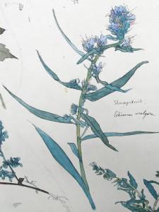 Nieuwenhuis-Th.-detail-1-bloemstilleven-1