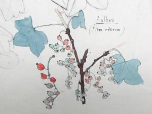 Nieuwenhuis-Th.-detail--bloemstilleven-2
