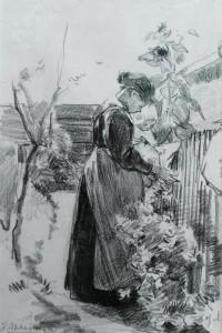 Akkeringa-In-den-tuin