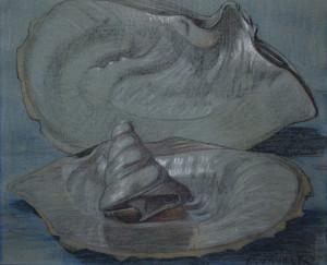 Valk-vd-M-Stilleven-met-oester-en-spiraalvormige-schelp